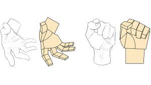 【骨骼和肌肉】學習手的構造
