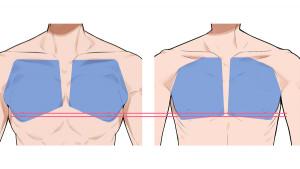 【標準體型篇】繪製男性的身體